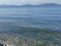 Oksijen azlığı, Marmara Denizi için tehlike oluşturuyor
