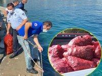 Sarıyer sahilinde 4 ton midye ele geçirildi