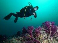 Çanakkale Boğazı'ndaki batıklara dalış turizmi gelişiyor
