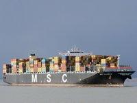 MSC LAUREN isimli konteyner gemisi karantinaya alındı