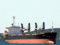 Vivalon AG, 2 adet gemi daha satın alacak