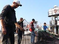 Marmara Denizi'nin 'özel çevre koruma bölgesi' ilan edilecek olması balıkçıları sevindirdi