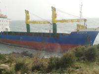 Şiddetli fırtına ve lodos nedeniyle Nemrut Körfezi'nde 3 gemi karaya oturdu
