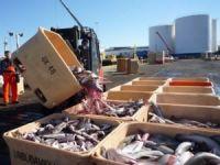 İzlanda AB üyelik başvurusunu balıkçılık yüzünden geri çekti