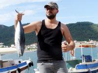 Marmaris'te balıkçılar en büyük balığı yakalamak için yarıştı