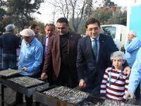Sinop hamsisi İstanbul'da görücüye çıktı