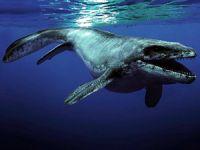 Antarktika'da su altında yaşamış iki dinozor türü keşfedildi