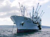 Orkinos yüklü gemi Çeşme Ildırı açıklarında karaya oturdu