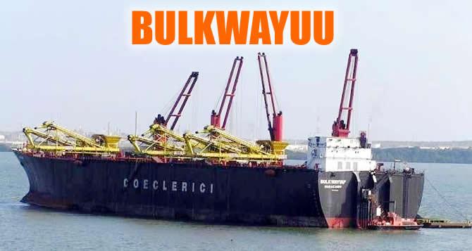 bulkwayuu_buyuk.jpg