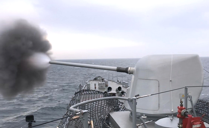 denizkurdu_4.jpg
