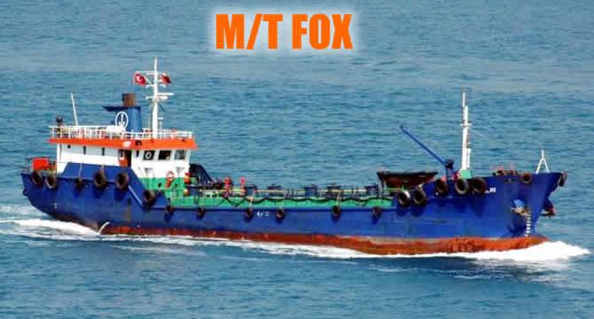 fox_buyuk.jpg