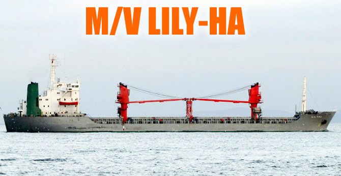 lily_ha_b.jpg