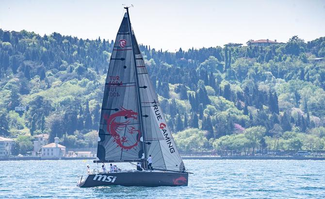 msi_sailing_5.jpg