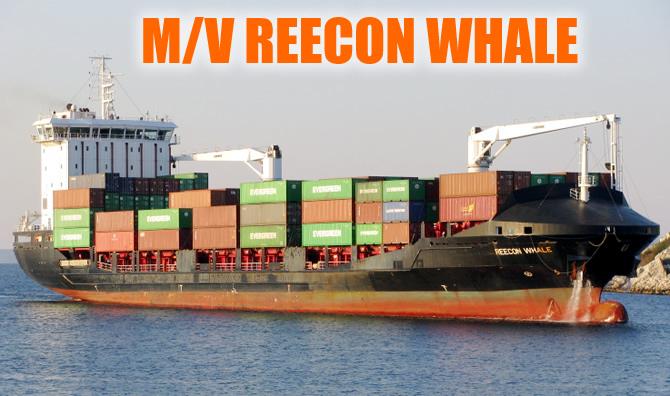 reecon_whale_buyuk.jpg