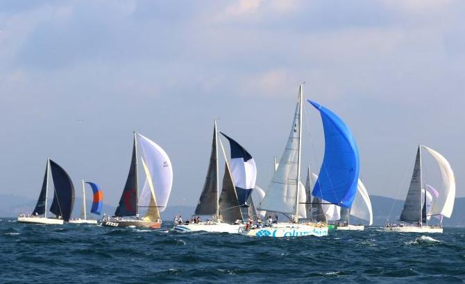 sail-005.jpg