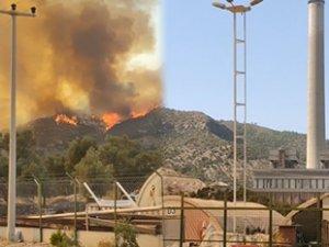 Milas'taki yangın yeniden termik santrallere doğru ilerliyor